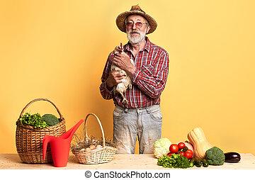 debout, légumes, compteur, derrière, mûrir, frais, poule, jardinier