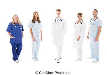 debout, monde médical, confiant, portrait équipe, rang