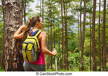 debout, montagne, femme, sac à dos, jeune, randonneur, forêt, apprécier, vue dessus