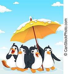 debout, pingouins, parapluie, sous