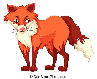 debout, renard blanc, arrière-plan rouge