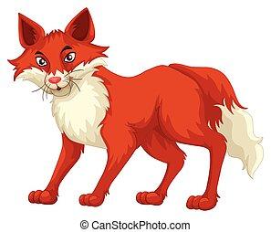 debout, renard, fourrure, rouges
