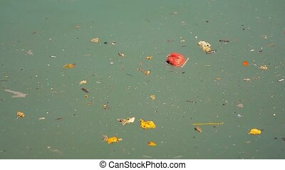 Debris and Filth Floating on Stagnant Water