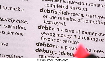 Debt highlighted in pink in the dictionary
