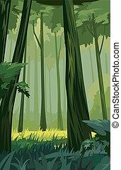 decíduo, floresta, verão