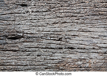 Decay wood