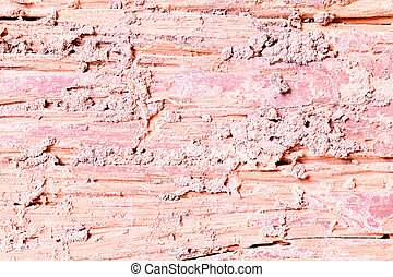 Decay wood texture