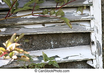 decayed shutters