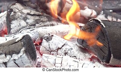 Decaying coals for cooking and a background wood charcoal...