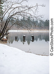 Decaying wooden piers in winter lake