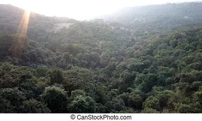 Deccan plateau 2, India, in winter. Eternal greenery. -...