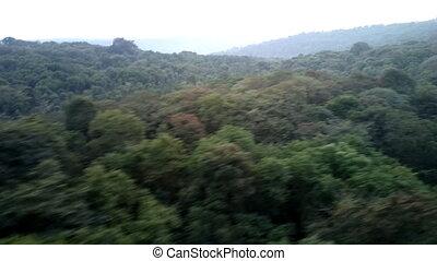 Deccan plateau 3, India, in winter. Eternal greenery. -...