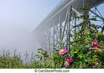 Deception Pass Bridge in fog.