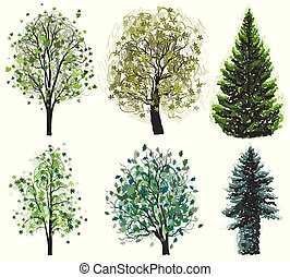 Deciduous and coniferous green trees set. Vector illustration.