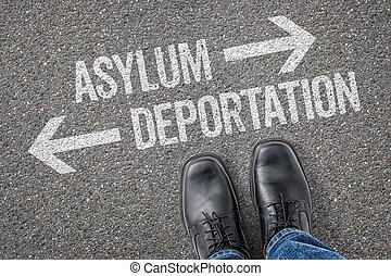 decisione, a, uno, incrocio, -, asilo, o, deportation