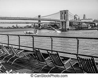 Deck Chairs and Brooklyn Bridge