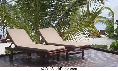 Deck Chairs and Palm Trees at a Tropical Beach Paradise -...