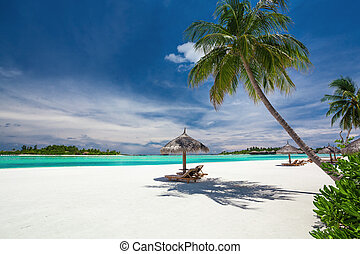 Deck chairs under palm trees on a tropical beach of Maldives