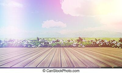 deck, hölzern, effekt, retro, gänseblümchen, landschaftsbild, 3d