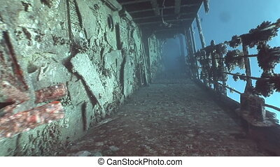 Deck of sunken ship Salem Express shipwrecks underwater in...