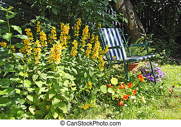 deckchair, 古い, 庭, 美しい