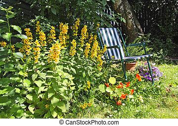 deckchair, vecchio, giardino, bello