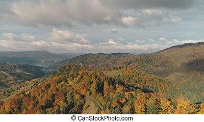 decke, hügel, farben, verschieden, hoch, wälder, gemischter...