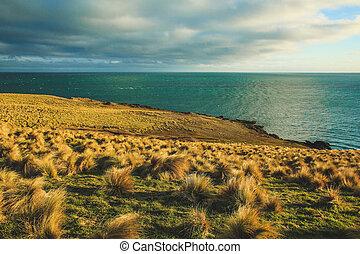 declive, zelândia, ilha, ponto, novo, durante, pôr do sol, sul