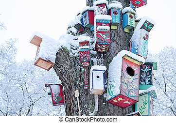 decorative colorful painted bird houses nesting box hang on large old tree trunk covered with snow in winter.