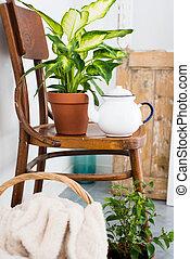 decor for summer balcony - Vintage enamel tea pot and green...