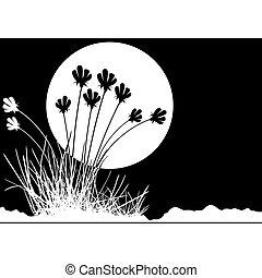 decoração floral, 03