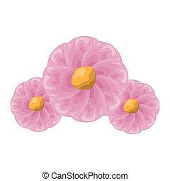 decoração, flores, três