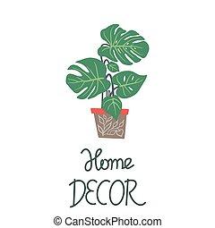 decoração, houseplant, folhas, nota, experiência., verde, grande, lar, branca, pote