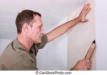 decorador, penduradas, papel parede