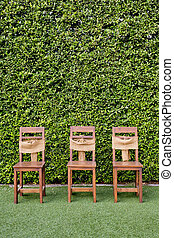Decorate three wooden chairs against the green small tree wall.