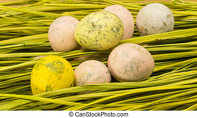 decorated easter Quail eggs in the grass