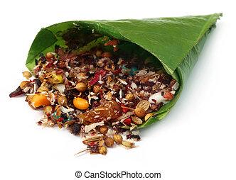 betel leaf for festivals