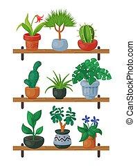 decoratief, exotische , gardening., tafel., tuin, beauty,...