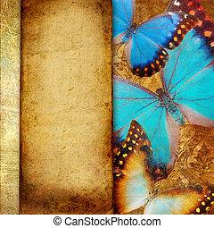 decoratief, frame, achtergrond