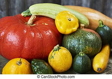 decoratief, herfst, display, van, pompoennen, en, squash, fris, op, houten, achtergrond