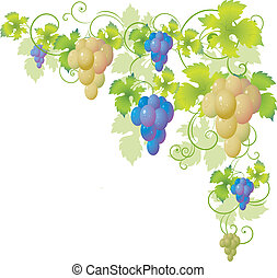 decoratief, hoek, van, de, wijnstok
