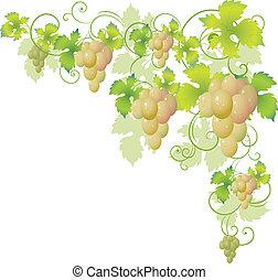 decoratief, hoek, wijnstok