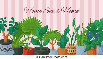 decoratief, planten, gardening., tuin, beauty, natuur,...