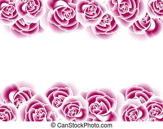 decoratief, rozen, grens