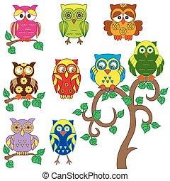 decoratief, set, gevarieerd, kleurrijke, uilen
