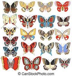 decoratief, set, illustratie, vlinder, achtergrond, witte