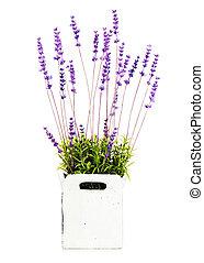 decoratief, tuin, vase., kunstmatig, bloemen, samenstelling