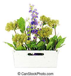 decoratief, tuin, vrijstaand, kunstmatig, vaas, achtergrond., witte bloemen, samenstelling