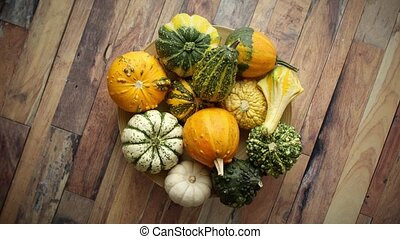 Decoration made from small pumpkins. Colored pumpkins in ...