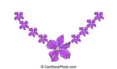 decoration of purple flowers on a white background